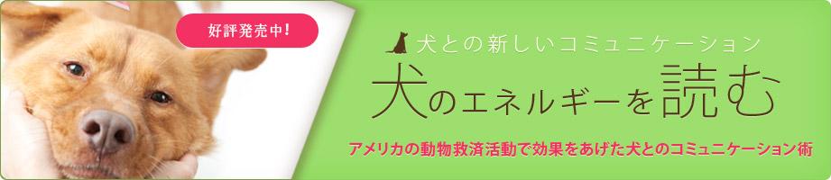 犬のエネルギーを読む☆好評発売中!