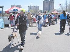 人と動物参加型イベントの様子