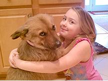 子供のいる家庭では成犬をすすめる事が多い