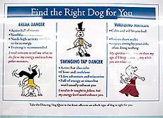 ▲シェルターに表示されている犬の運動量の目安を示すボード