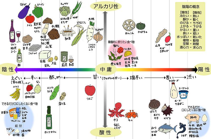 食物陰陽リスト