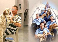 刑務所や少年院でのドッグトレーニング