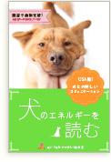【アメリカの動物救済活動で効果をあげた犬とのコミュニケーション術】犬のエネルギーを読む